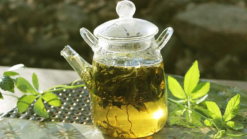 Thao Nguyen Jiaogulan tea 4 1