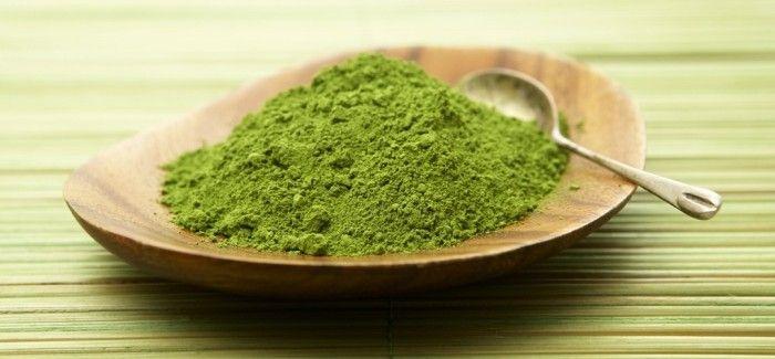 làm bột trà xanh tại nhà cùng Trần Mao
