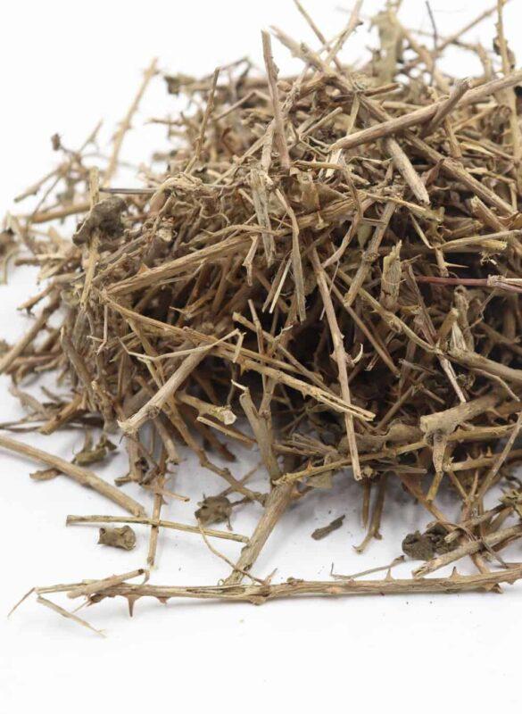 trà cà gai leo thảo nguyên