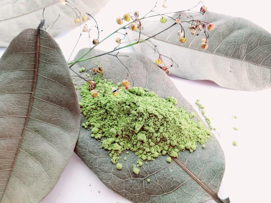 bột trà xanh Trần Mao giảm cân