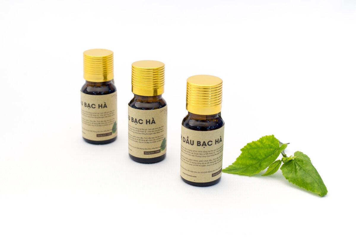 Công dụng tinh dầu Bạc Hà dược liệu an toàn hiệu quả đối với sức khỏe