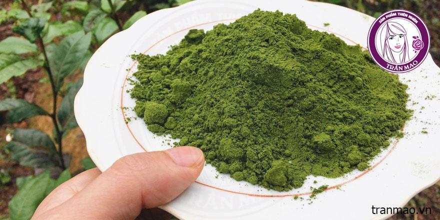 Bột trà xanh có tác dụng gì trong làm đẹp